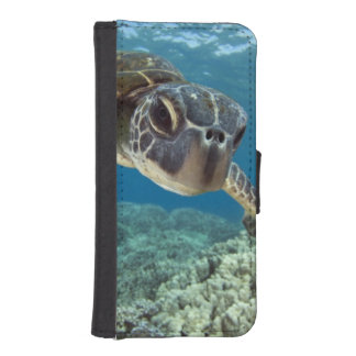 Hawaiian Green Sea Turtle iPhone SE/5/5s Wallet Case
