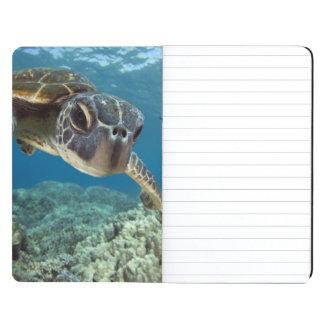 Hawaiian Green Sea Turtle Journals