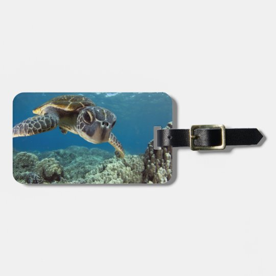 Hawaiian Green Sea Turtle Luggage Tag