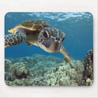 Hawaiian Green Sea Turtle Mouse Mat