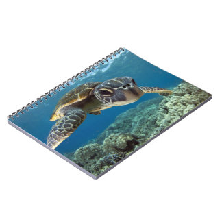 Hawaiian Green Sea Turtle Notebook