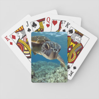 Hawaiian Green Sea Turtle Playing Cards