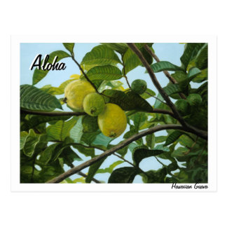 Hawaiian Guava Postcard
