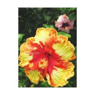 Hawaiian Hibiscus Canvas Print