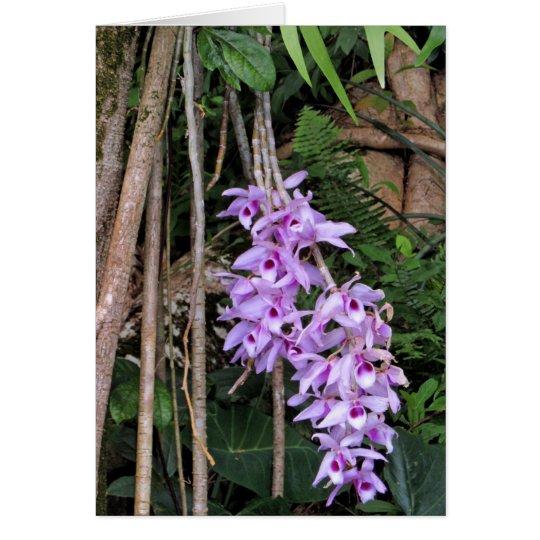 Hawaiian Honohono Orchids Card