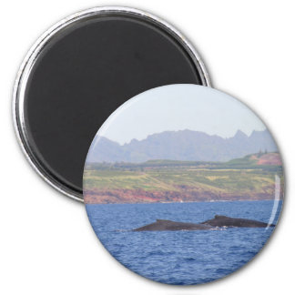Hawaiian Humpback Whales 6 Cm Round Magnet