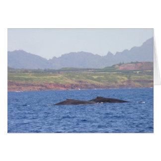 Hawaiian Humpback Whales Card