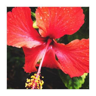 Hawaiian Island Hibiscus Flower Canvas Print
