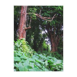 Hawaiian Jungle Gallery Wrapped Canvas