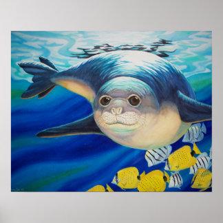Hawaiian Monk Seal Poster