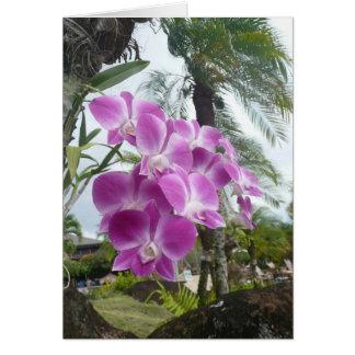 HAWAIIAN ORCHID - Blank Note Card