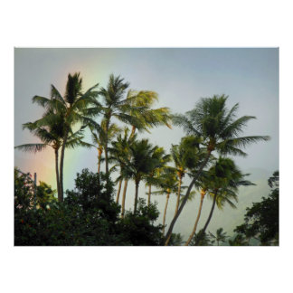Hawaiian Palms Poster