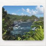 Hawaiian Paradise Mousepads