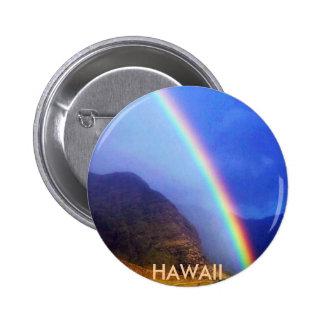 Hawaiian Pin