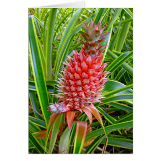 Hawaiian Pineapple Card