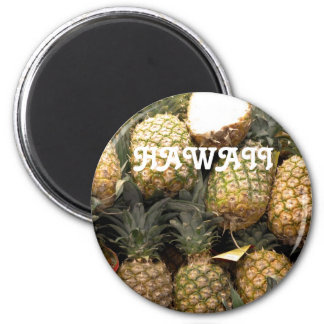 Hawaiian Pineapple Magnet