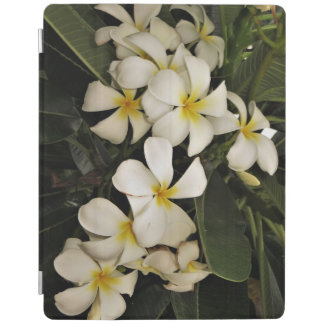 Hawaiian Plumeria iPad Case iPad Cover