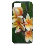 Hawaiian Plumeria iPhone 5 Cover