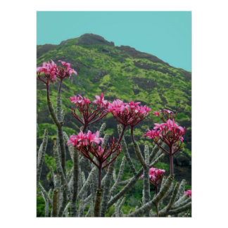 Hawaiian Plumeria Print