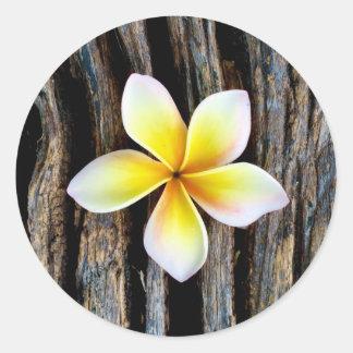 Hawaiian Plumeria Wedding Invitation Stickers