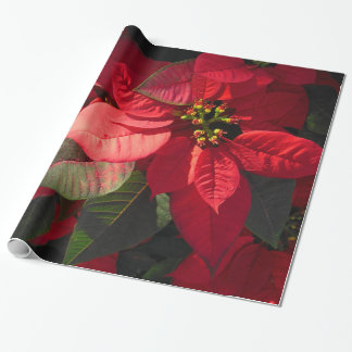 Hawaiian Poinsettia Wrapping Paper