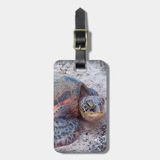 Hawaiian sea turtle close-up photo luggage tag