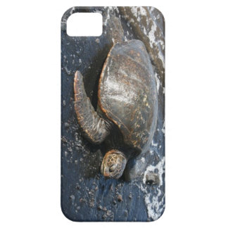 Hawaiian Sea Turtle on Black Sand Beach iPhone 5 Cases