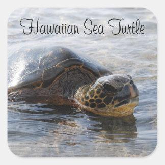Hawaiian Sea Turtle Stickers