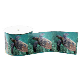 Hawaiian Sea Turtles Ribbon Grosgrain Ribbon