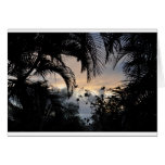 Hawaiian sunset through trees photograph card