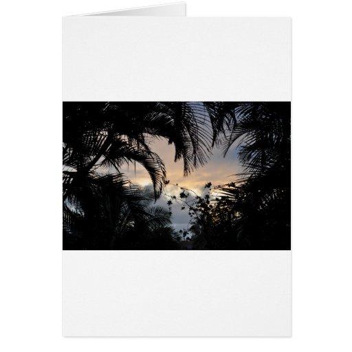 Hawaiian sunset through trees photograph greeting card