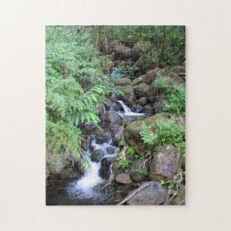Hawaiian Tropical Stream Jigsaw Puzzle