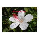 Hawaiian Wedding Congratulations White Hibiscus Greeting Card