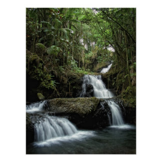 HAWAII'S ONOMEA FALLS POSTER