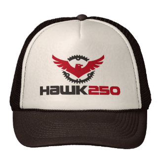 Hawk 250 Enduro Trucker Hat