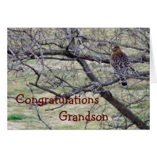 Hawk Congratulations - customize any occasion Greeting Card