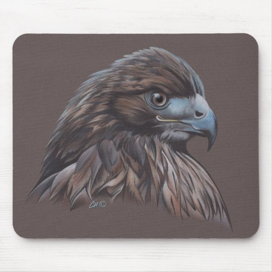 Hawk in Coloured Pencil Mouse Mat