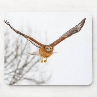 Hawk In Flight Mouse Pad