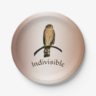 Hawk Indivisible Brown Paper Plate