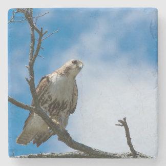 Hawk On The Hunt Marble Stone Coaster