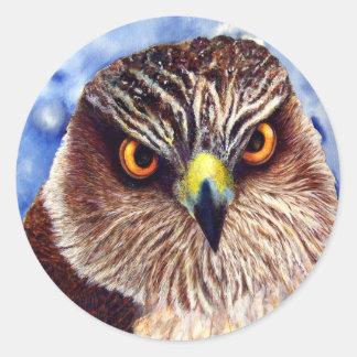 Hawk Stickers