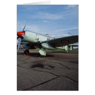 Hawker Sea Fury at CAF, Minnesota Wing, at the 2 Card