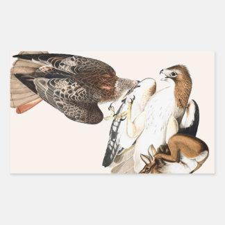 Hawks Hunt Vintage Illustration Rectangular Sticker