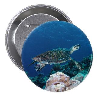 Hawksbill Sea Turtle Button