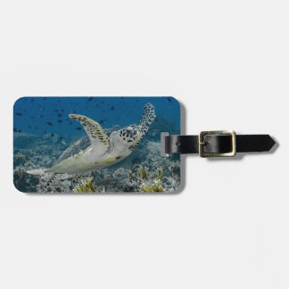 Hawksbill Sea Turtle Swimming Luggage Tag