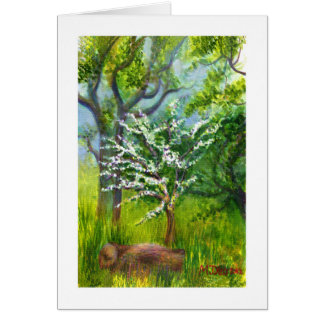 Hawthorn Blossom Card