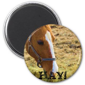 Hay! 6 Cm Round Magnet