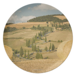 Hay bale and rolling landscape, Tuscany, Italy Plate