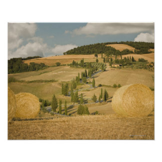 Hay bale and rolling landscape, Tuscany, Italy Poster