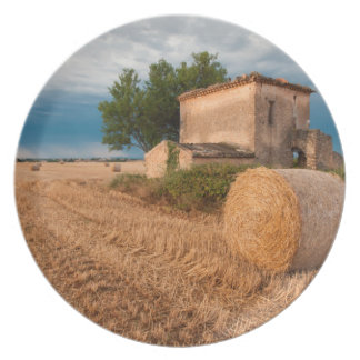 Hay bale in Provence field Plate